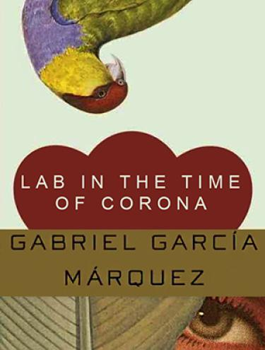 Lab in the time of corona