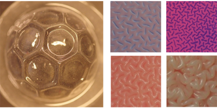 Examples of research of instability driven pattern formation on thin films