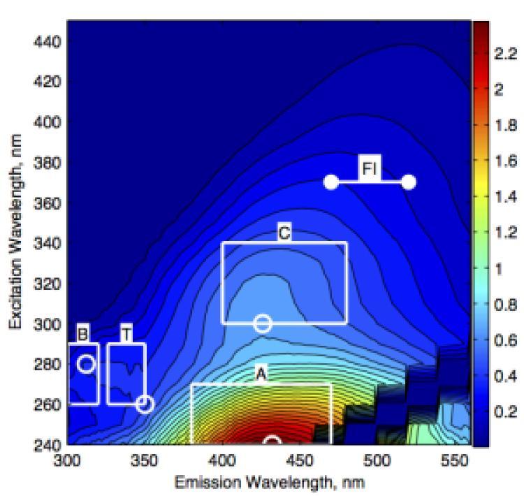 Optical characterization of organic matter