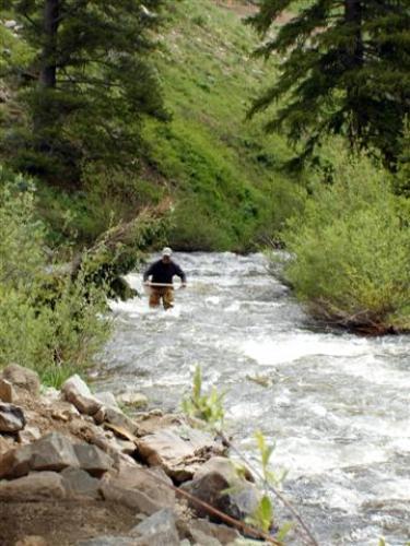 joe ryan wading the creek to collect samples