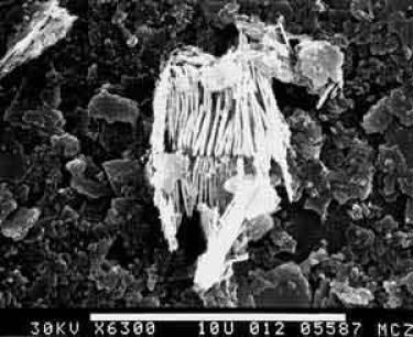 colloids from cohansey sand