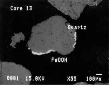thin section of cape cod sediment
