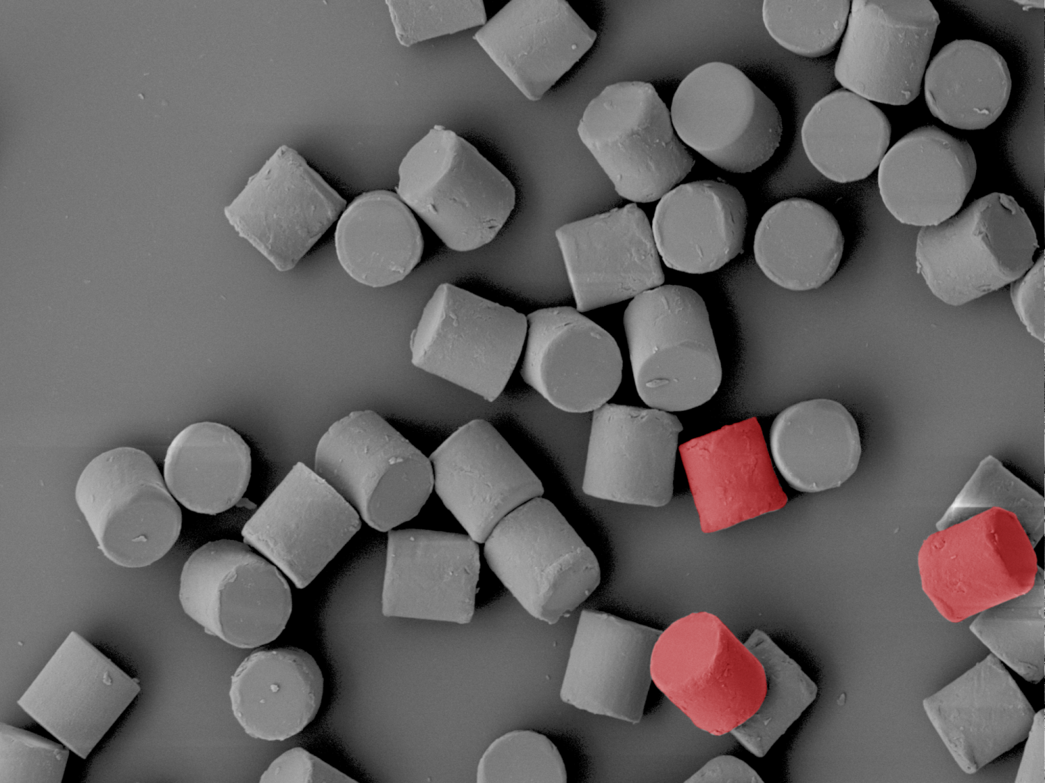 Nanoscale image of cylindrical cells, with three in the bottom right corner being colored red