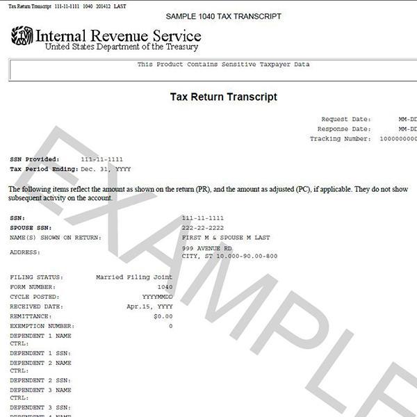 Example Tax Return Transcript