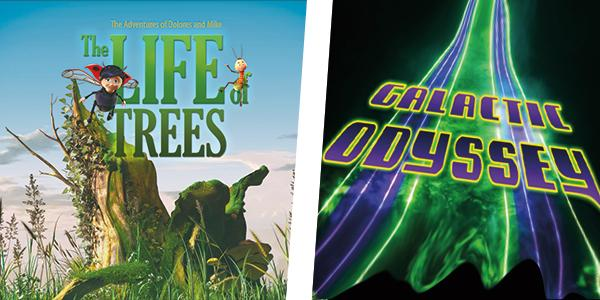 Still images from films of Life of Trees and Laser Galactic Odyssey