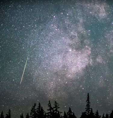 Perseid Meteor shower video still with silhouette of trees in the foreground