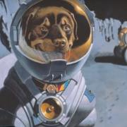 Max Goes to the Moon still image of astronaut dog