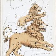 Illustration of constellation Leo the Lion