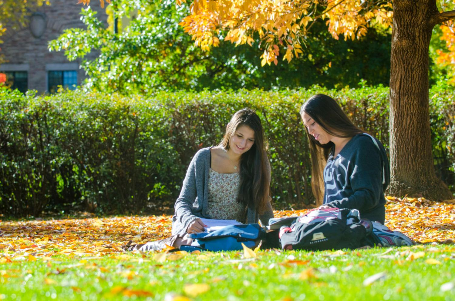 students sitting in the fall studying