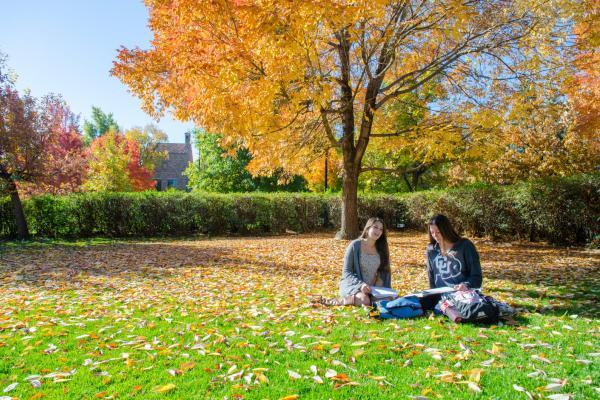 Two students sitting in the fall leaves studying
