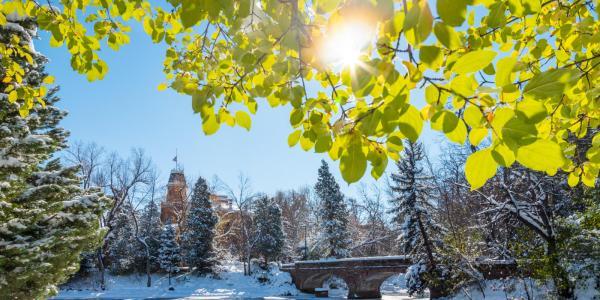 snowy varsity bridge on cu campus
