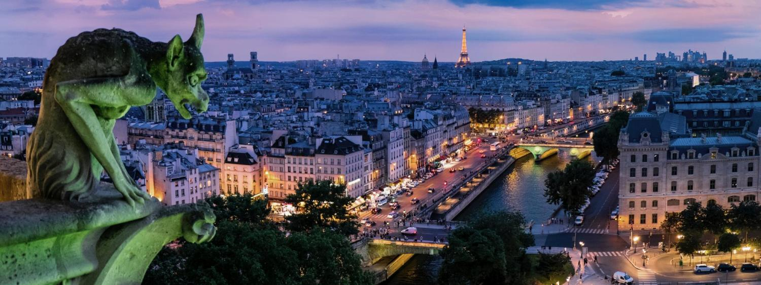 Night image of city from Cathedrale Notre Dame in Paris France