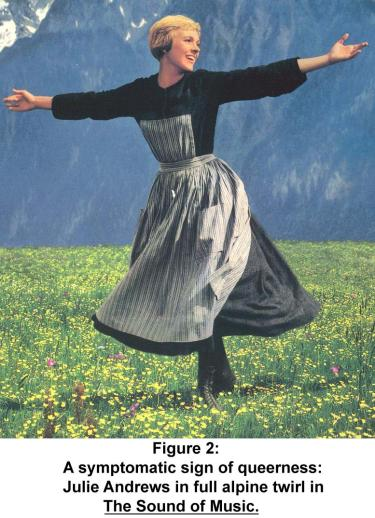 Julie Andrews in full alpine twirl in The Sound of Music.