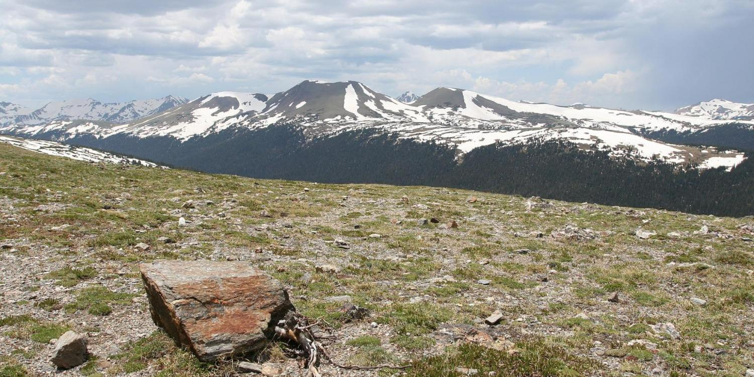 Arctic tundra with mountain landscape backdrop