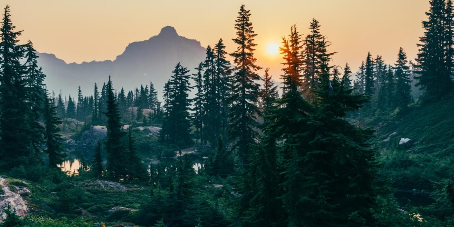 Morning mountain scene with pond and forest