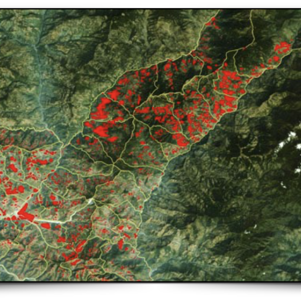 Remote sensing image of mountain terrain