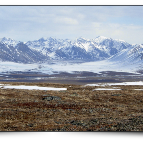 Arctic landscape with mountains
