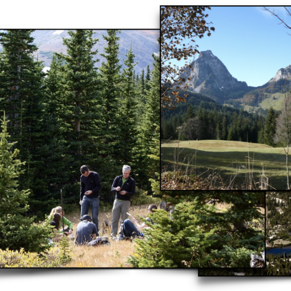 Collage of students doing research and mountain terrain in summer and winter