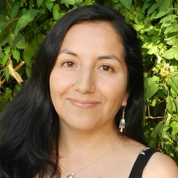 Viviana Huiliñir-Curio