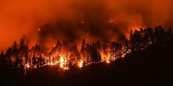 Wildfire showing a mountainside burning