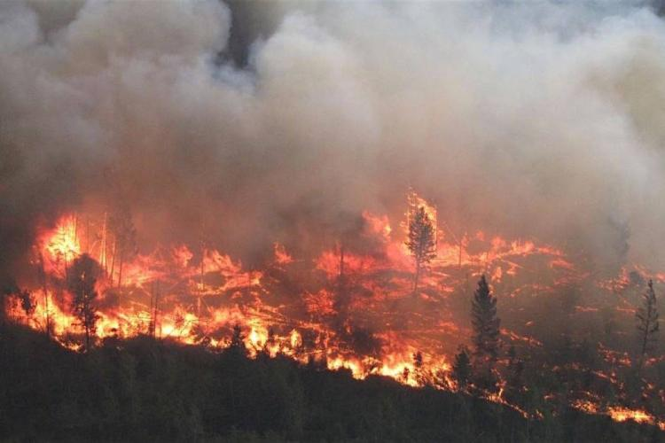 Wildfire aerial view