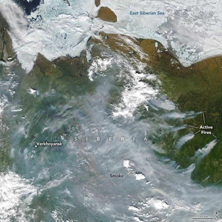 A satellite images shows thinning sea ice in parts of the East Siberian and Laptev Seas and wildfire smoke pouring across Russia. The town of Verkhoyansk, normally known for being one of the coldest inhabited places on Earth, reported hitting 100 degrees on June 20.  Joshua Stevens/NASA Earth Observatory