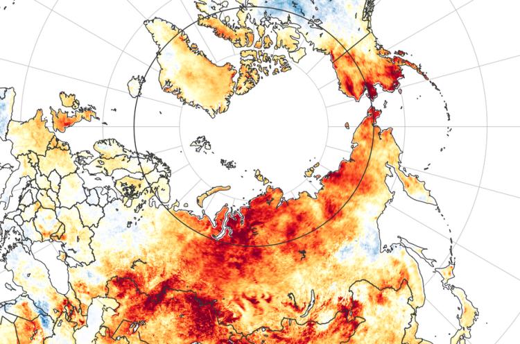 Arctic Heat Map