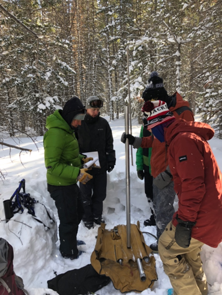 People in snow covered wooded area measuring Depth and Snow Water Equivalent