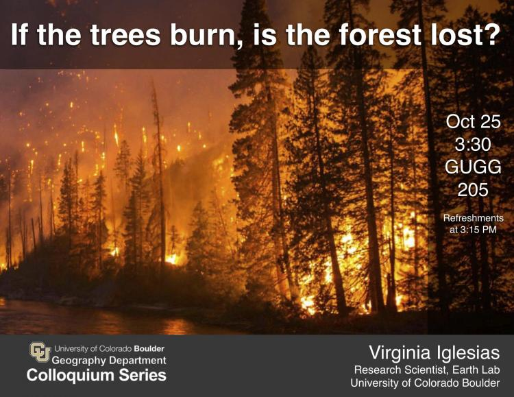 colloquium poster with photo of forest fire