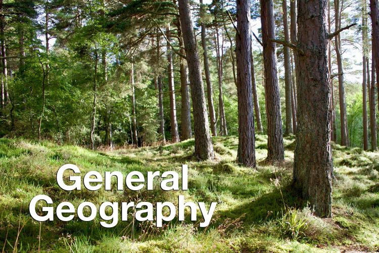 """General Geography"" overlaid on photo of pine trees in a forest"