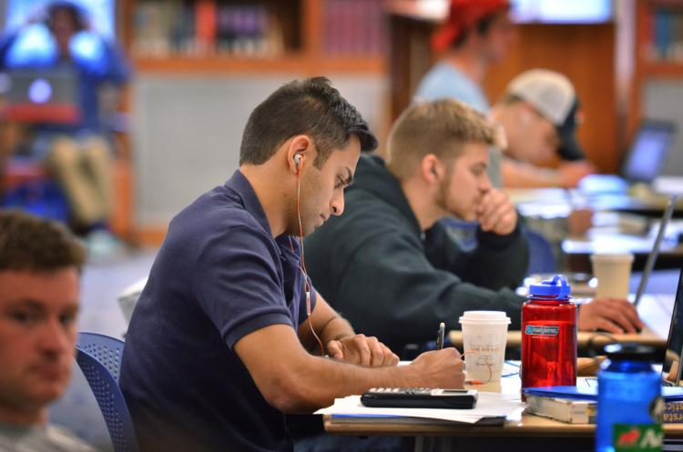 Students studying at their desks