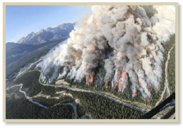 Aerial view of forest fire in Alberta, Canada