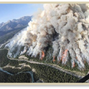 Aerial view of forest fire in Alberta Canada