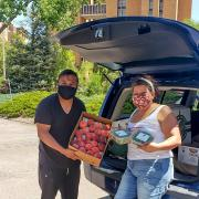 Man and woman holding boxes of fruit behind a car with it's trunk open