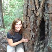 Woman stooped next to fire scarred pine tree