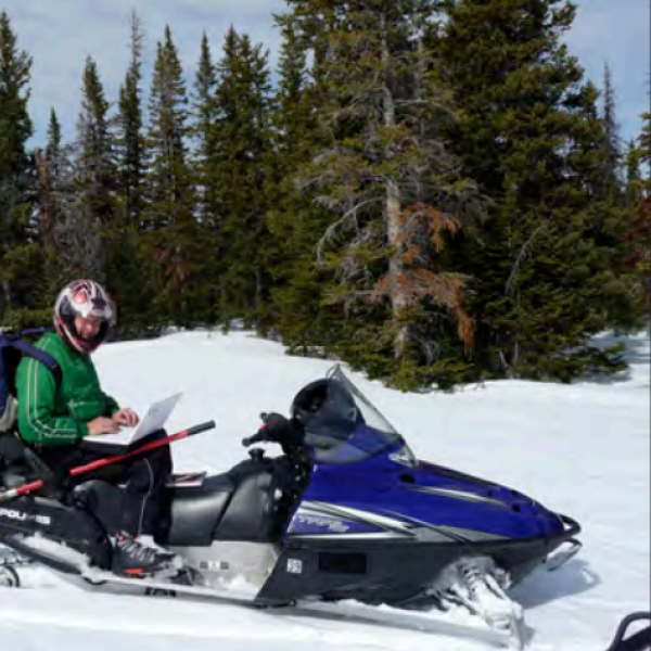Somebody riding a snowmobile
