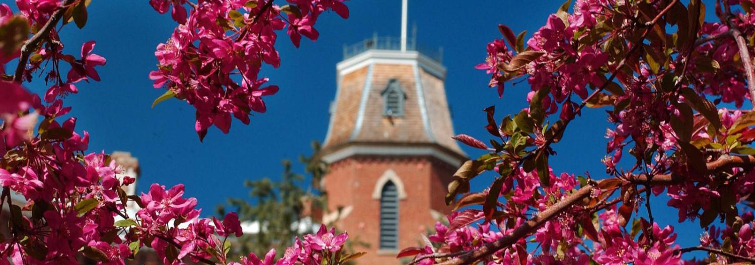 Top of Old Main with spring blooms in foreground