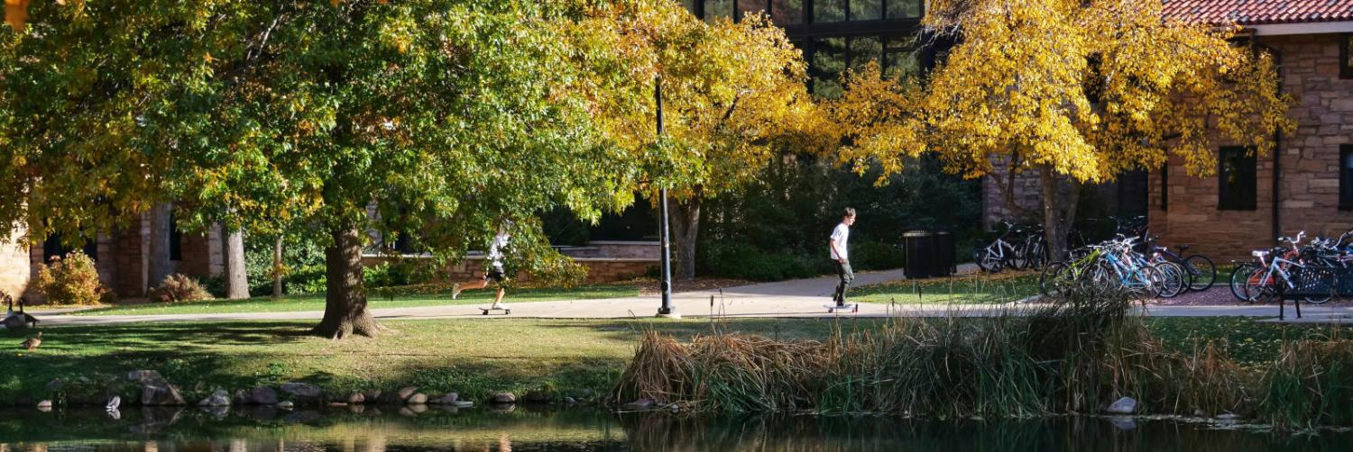 Students walking near a pond on campus