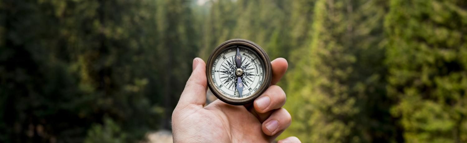 Hand holding a compass pointing north in front of a wooded background of pine trees.