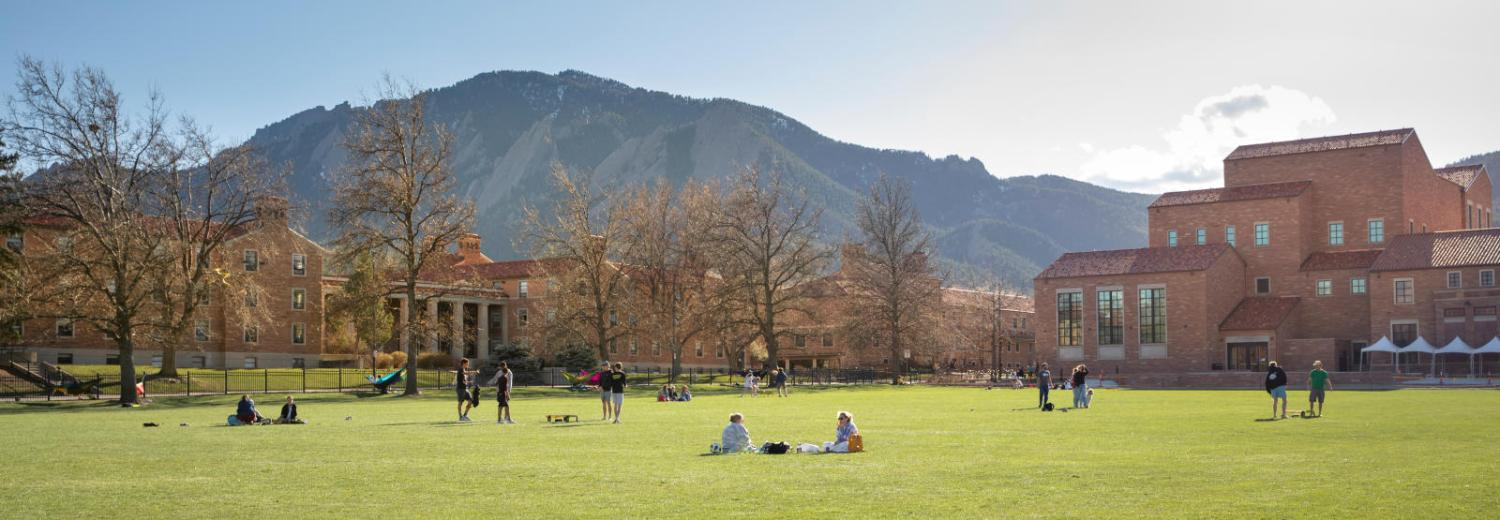 Panoramic view of farrand field with students hanging out outside.