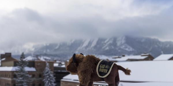 Ralphie doll on top of a snowy roof