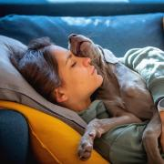 Girl sleeping on the couch with her puppy