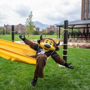 Chip laying in a hammock outside of a residence hall in Williams Village.
