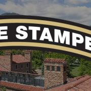 Feed the Stampede