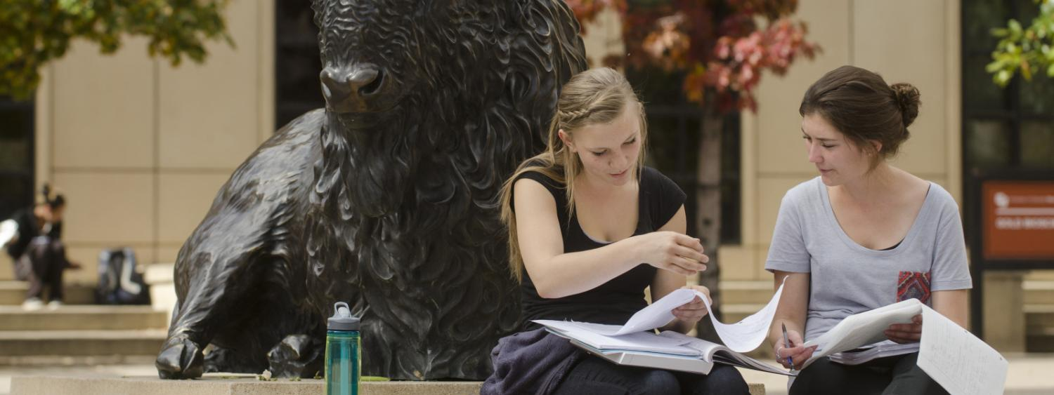 Two students studying at the buffalo statue.