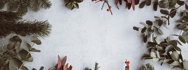 Photo by Annie Spratt- winter plants