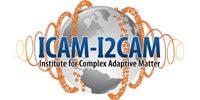 ICAM-I2CAM, Institute for Complex Adaptive Matter Logo