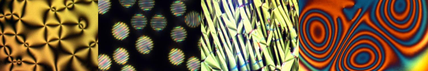 Microscopic Optical Imagery