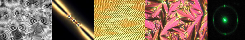 Microscopic Scientific Images