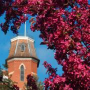 old main tower with flowers